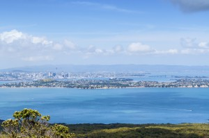 Rangitoto_Island_Photo (16)