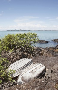 Rangitoto_Island_Photo (5)